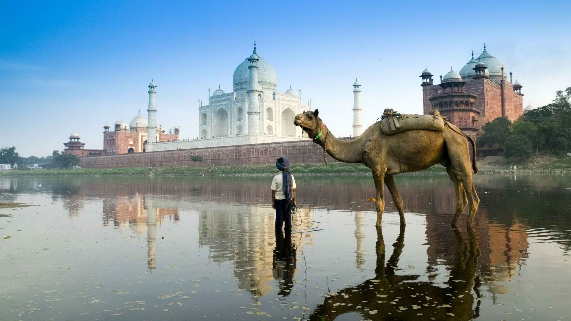 Amazing-India-37
