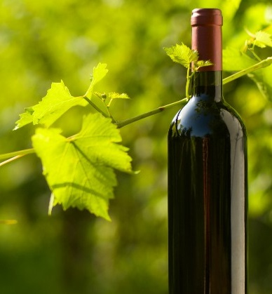 Industrial Ultrasonic Wine Ageing