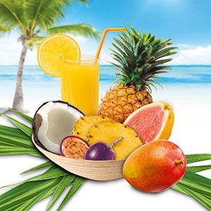 A new range of flavors WILD providing the taste of summer