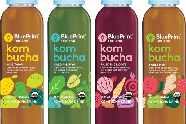 BluePrint® Organic Launches New Kombucha Drinks