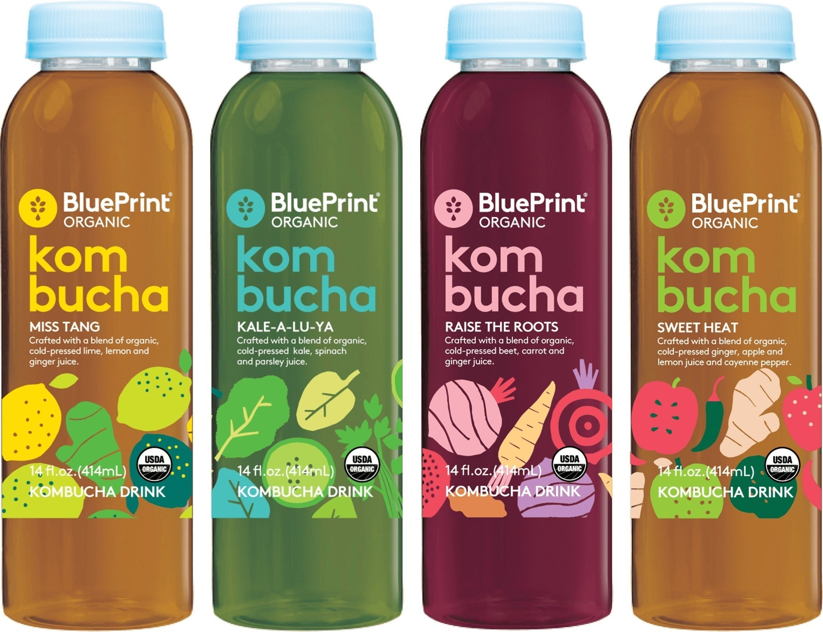 Blueprint organic launches new kombucha drinks malvernweather Image collections