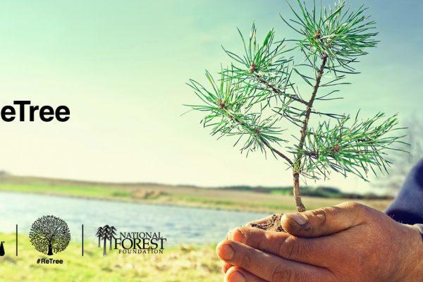 ReTree Social Campaign Surpasses Tree Planting Goals