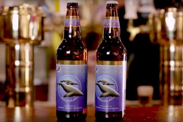 North Coast Brewing Company Launches An Ocean-Friendly IPA