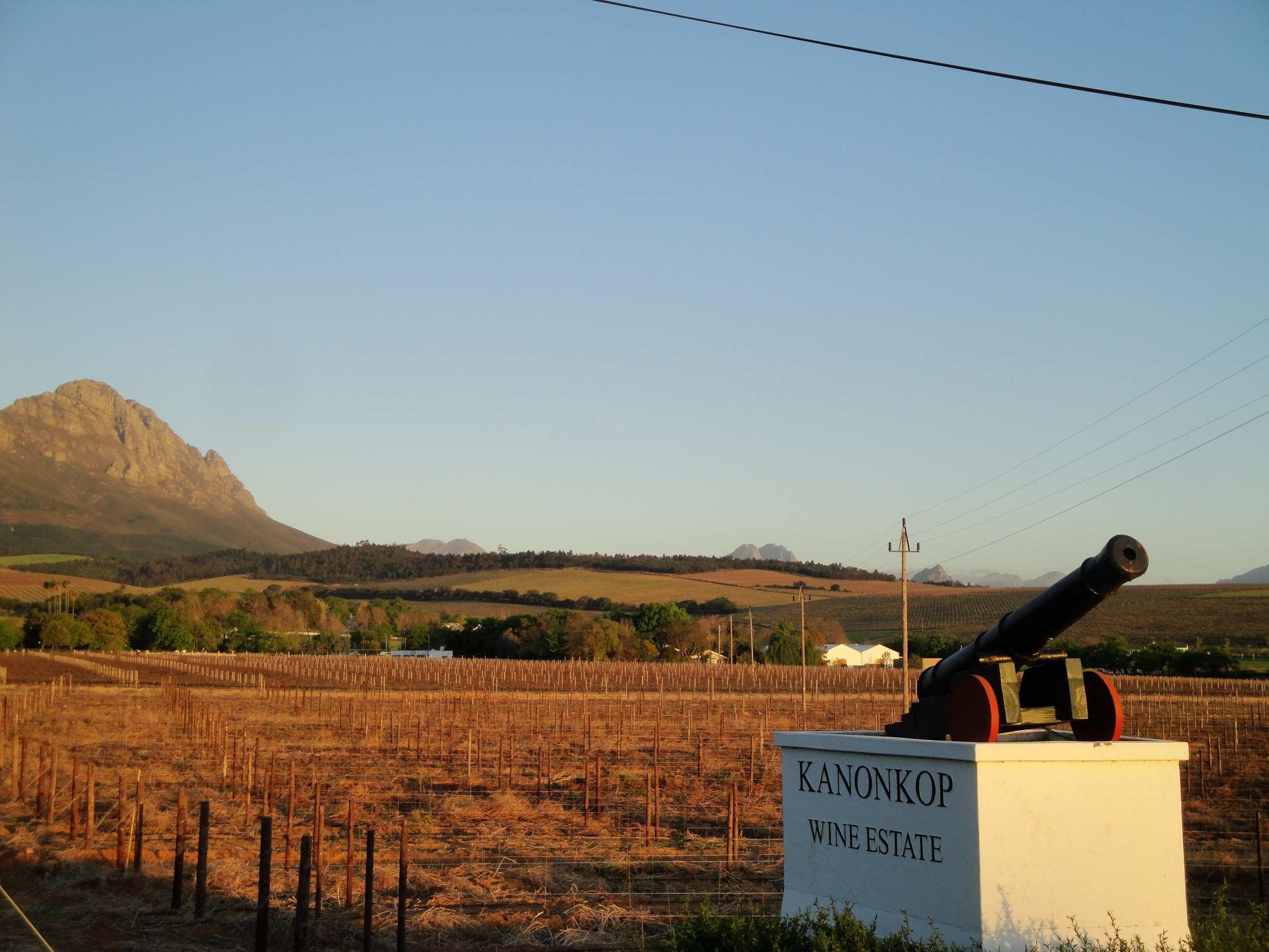 Top 10 wine farms in Cape Town