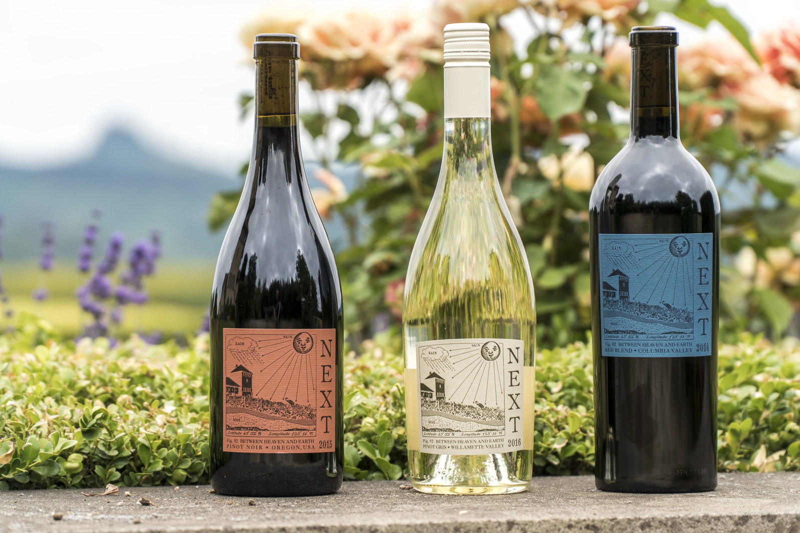 NEXT, a New Brand From a New Division of King Estate Winery