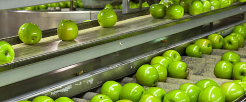 Reinventing Food Processing and Packaging at swop 2017