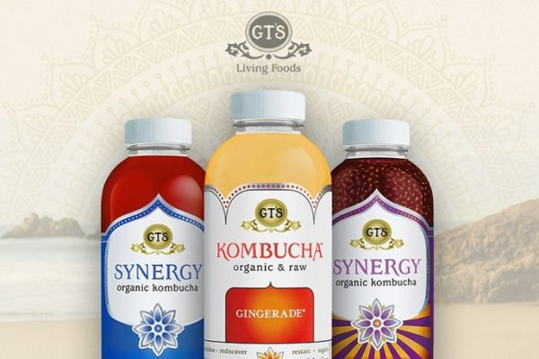 GT's Living Foods Presents 2018 Winter Edition Kombucha