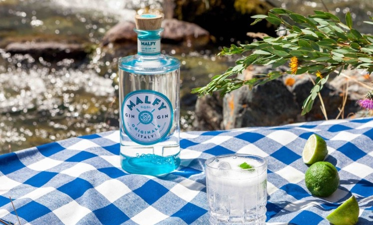 MALFY Launches Gin Originale