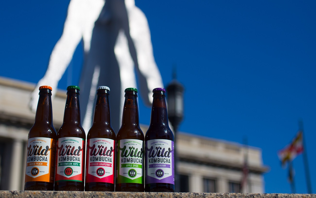 Wild Kombucha - A More Approachable Beverage Brand