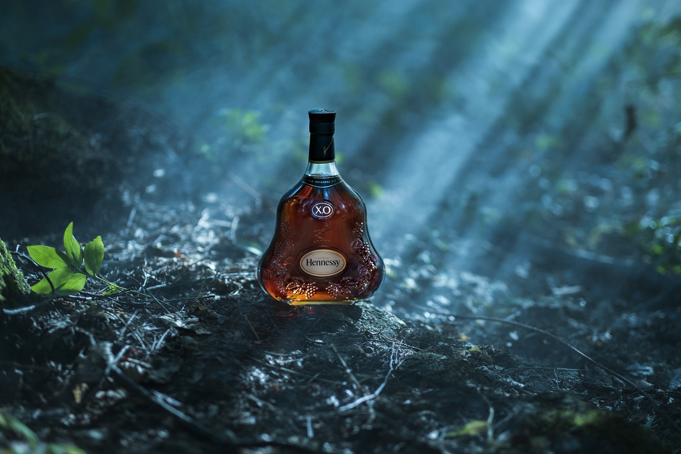 Hennessy Announces a Collaboration With Ridley Scott