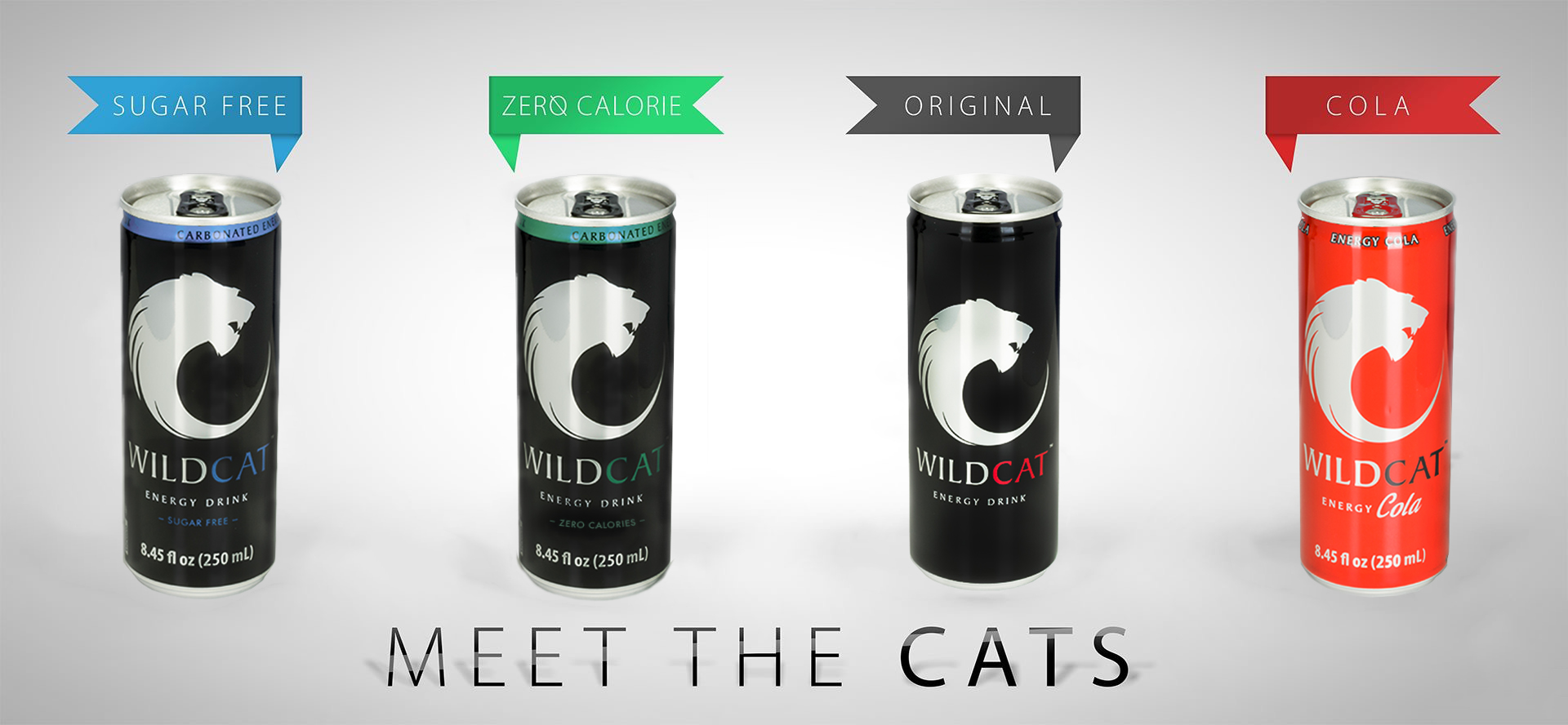 The Success Story Of WildCat Energy Drink