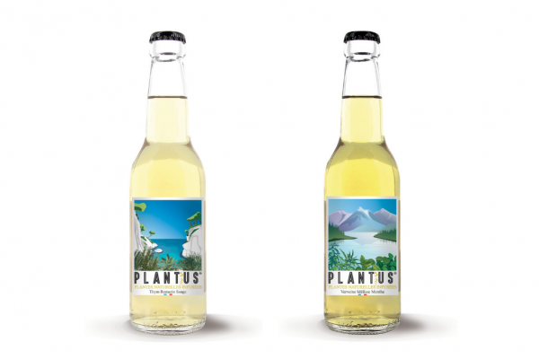 Plantus – Herbal Infused Sparkling Health Drinks