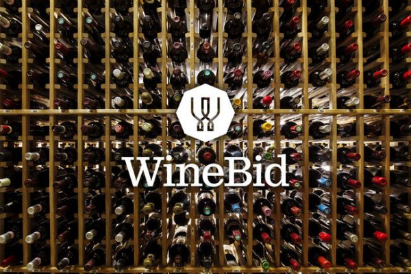 WineBid Announces Strong 2019 Transition Year
