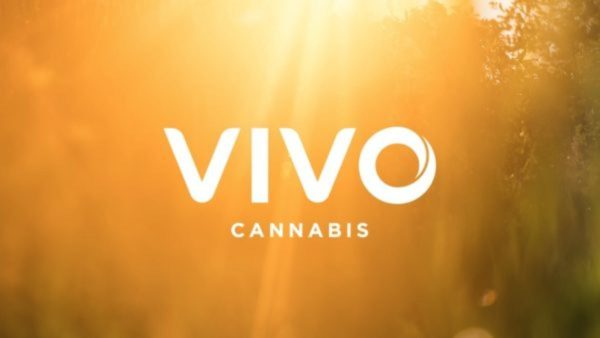 Vertosa Announces Partnership with VIVO Cannabis